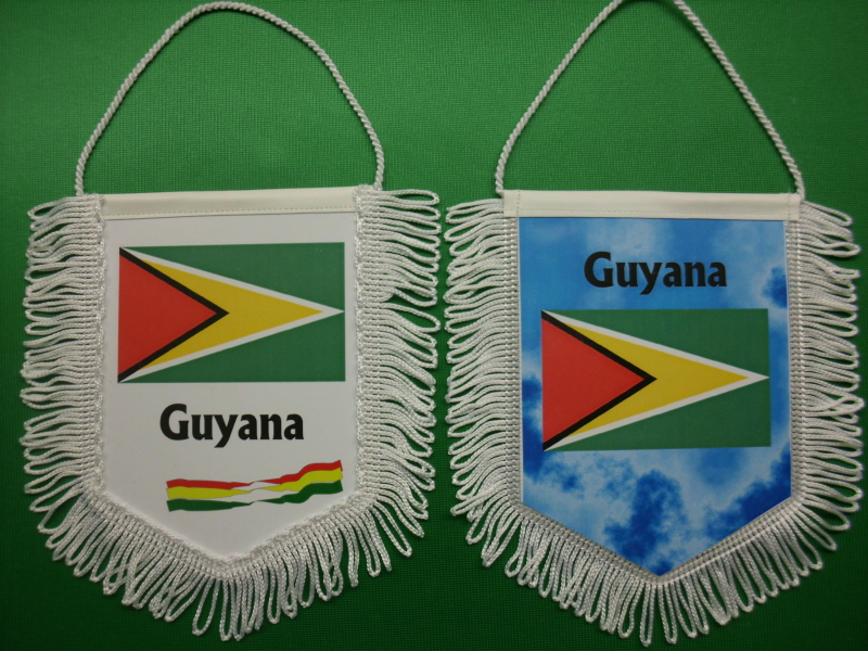 Banner Nationalbanner Autobanner Autowimpel Groesse 10/15 Guyana