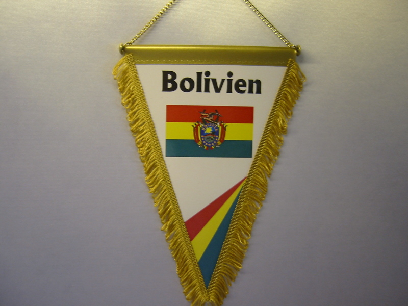 Wimpel Groesse 20/28 Bolivien