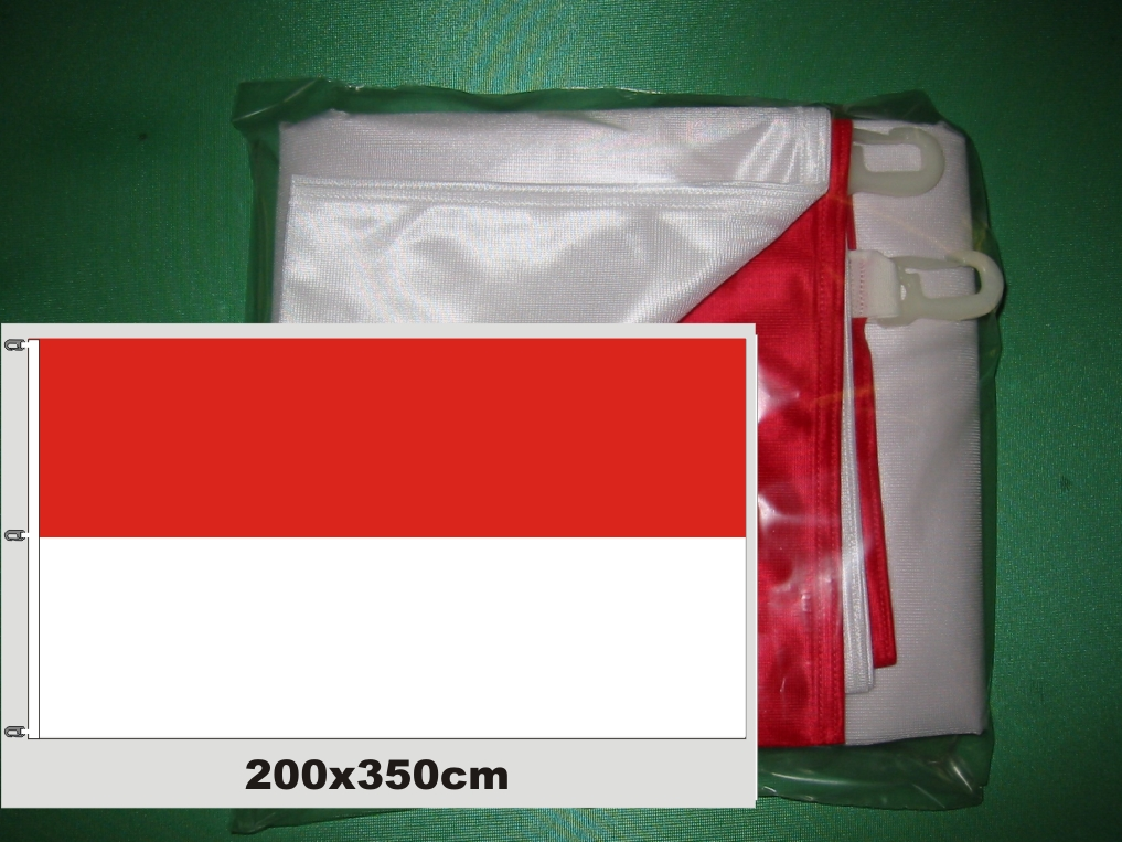 Hissfahne Fahne Flagge Groesse 200/350 rot-weiß